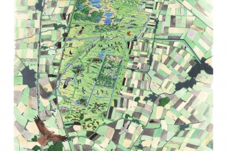 Great Fen vision map 2011