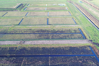 Water Works wet farming test beds