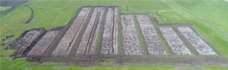 Wet farming beds drying out in May 2020, taken by drone