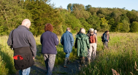 Guided walk